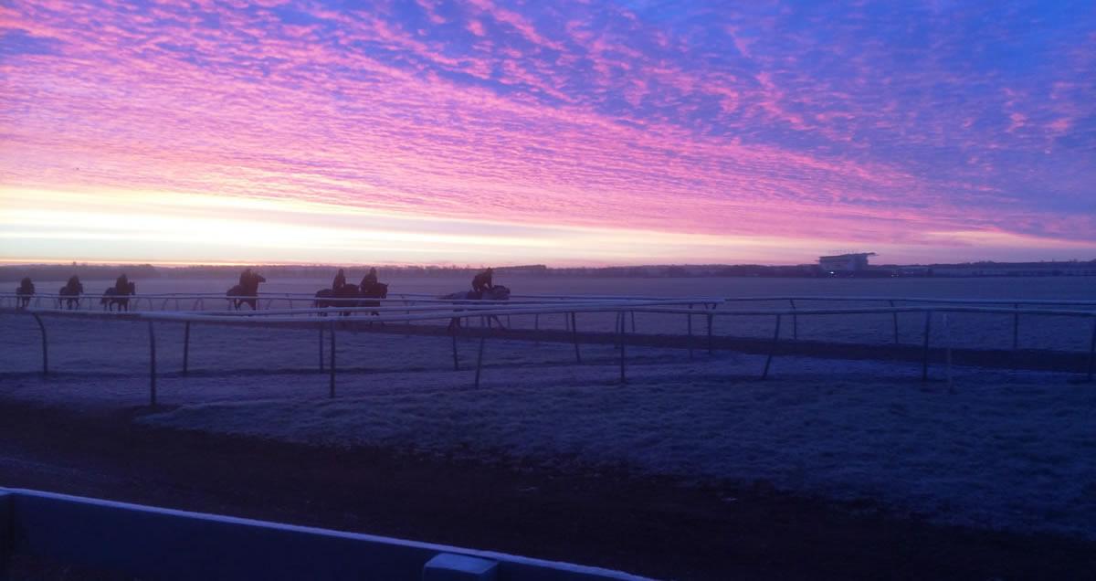 Gallops at Sunrise