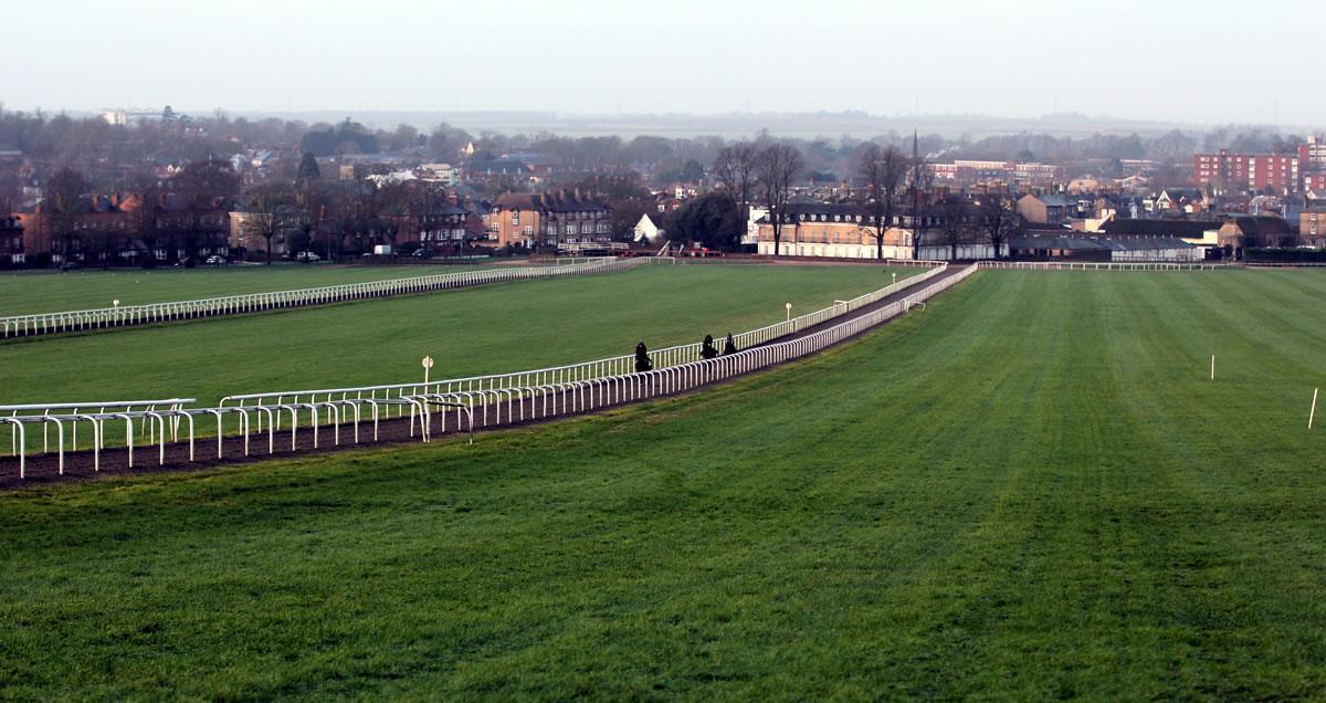 New-Gallops-Warren-Hill